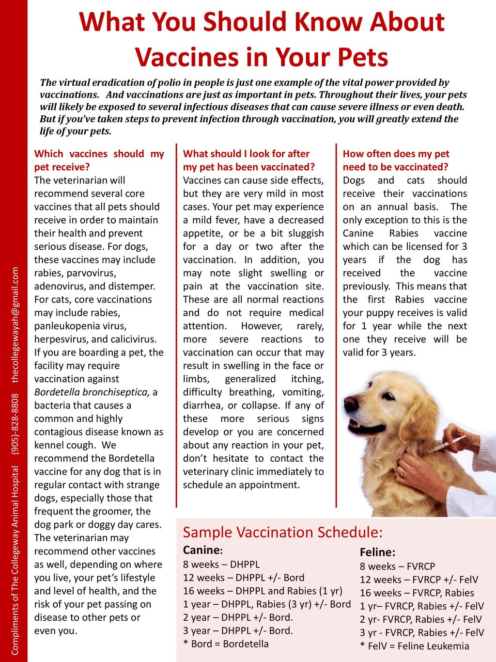 What You Should Know About Vaccines in Your Pets - ppt download