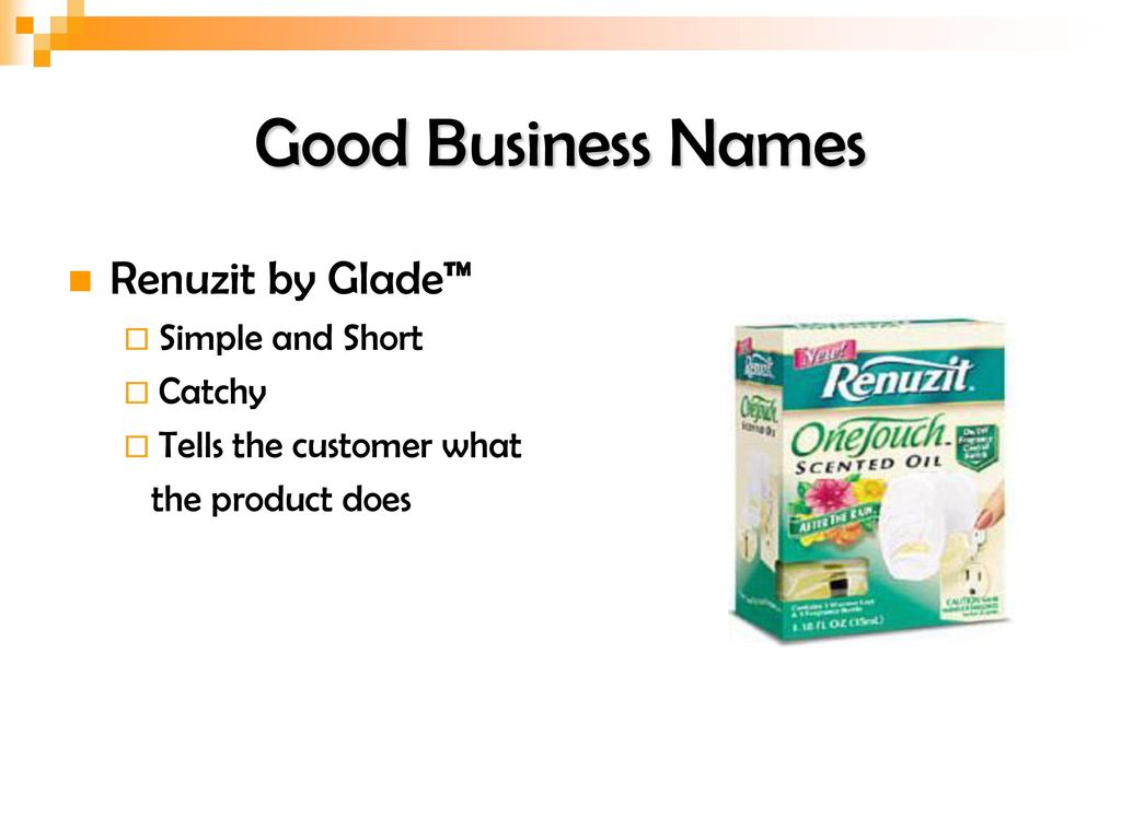 Naming Your Business  - ppt download