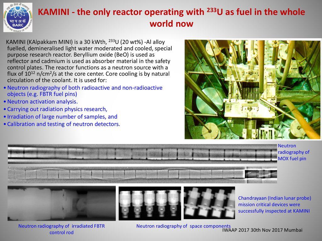 zerlina reactor