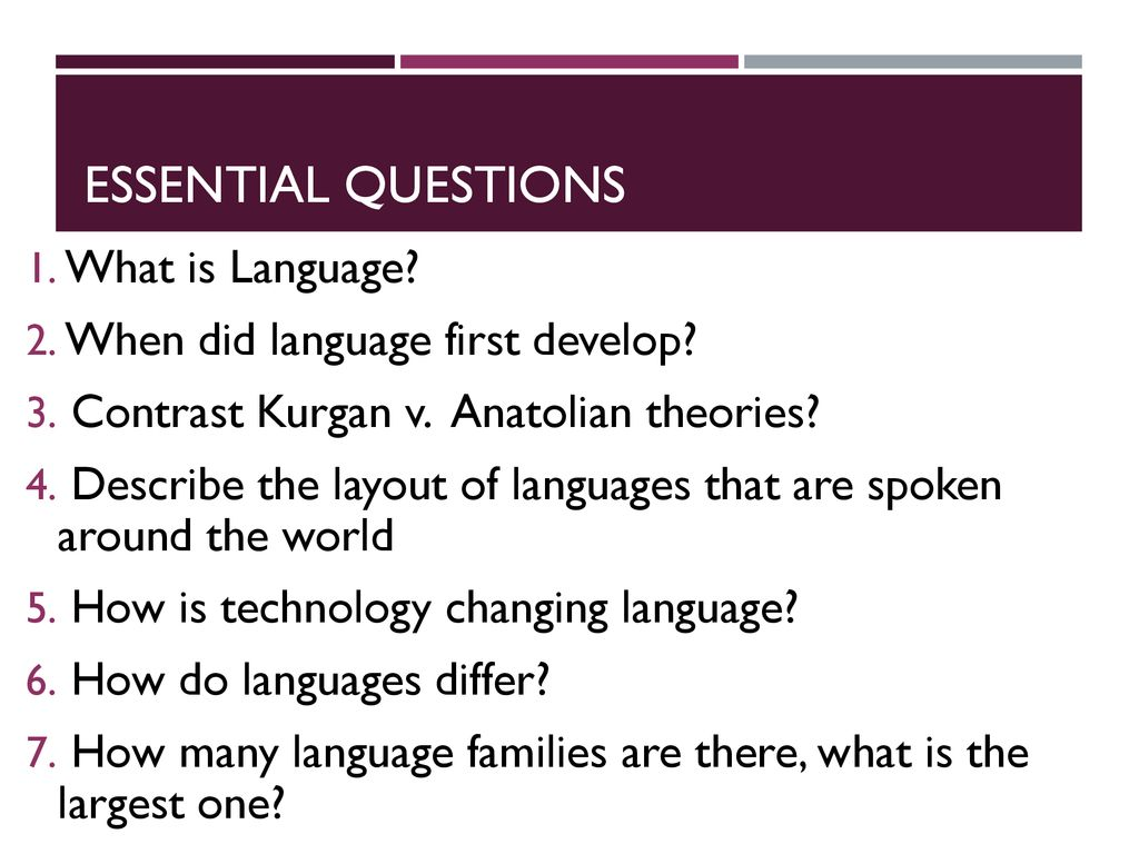 What is language 81