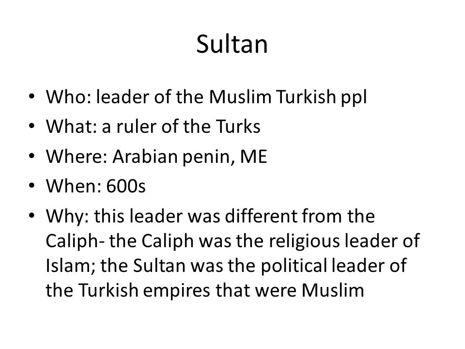 Sultan Who: leader of the Muslim Turkish ppl