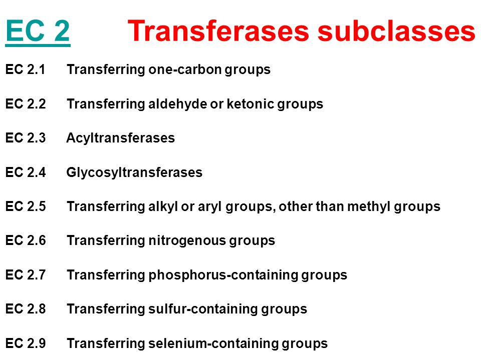 Transferases subclasses