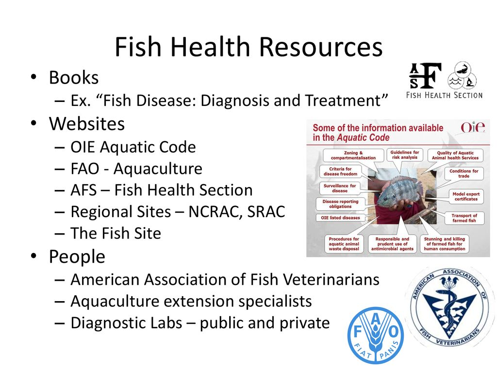 Iowa Aquaculture Conference November 14th, ppt download