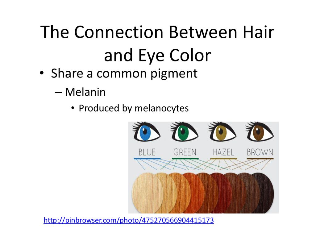 What Causes Hair And Eye Color To Change Over Time Ppt Download