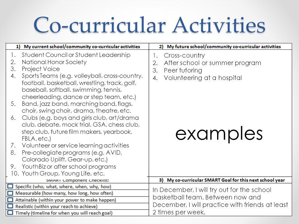 Co Curricular Activities Examples Gallery Example Cover Letter For