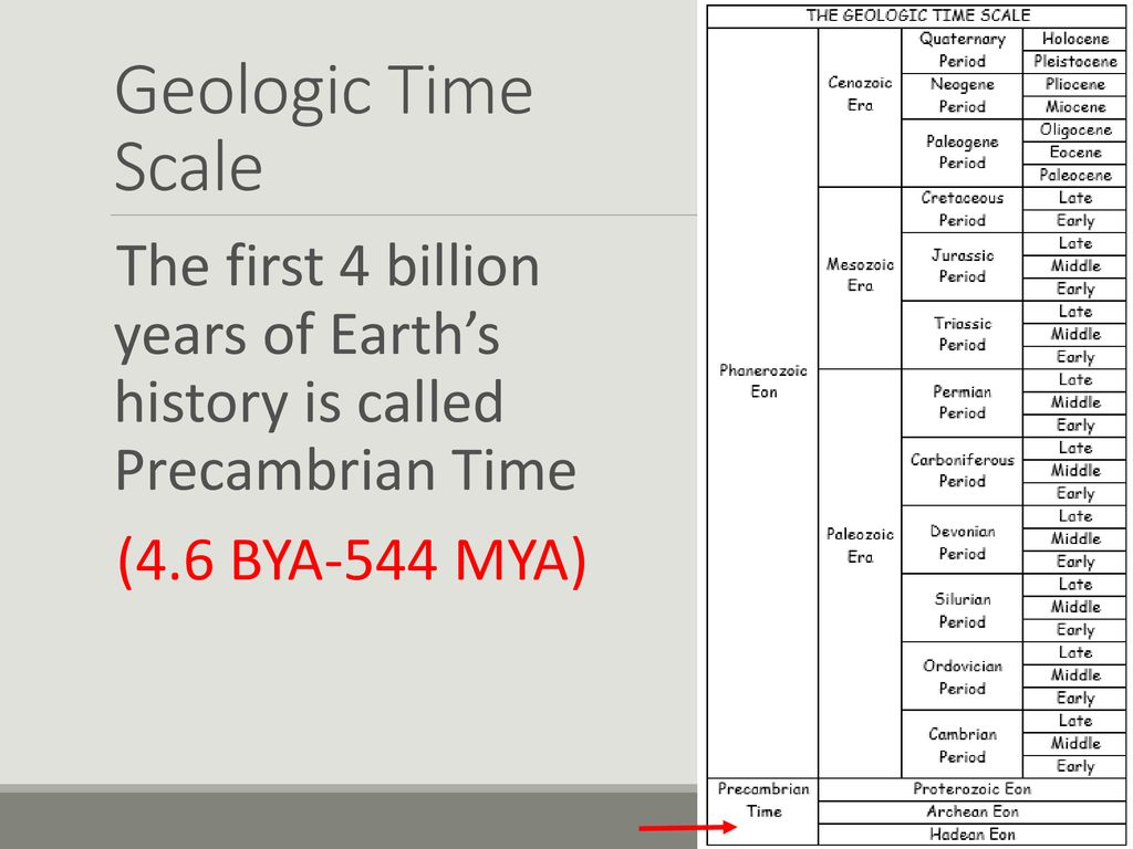 Geological society of america geologic time scale gsa bulletin the geologic time scale ppt download geologic time ibookread ePUb
