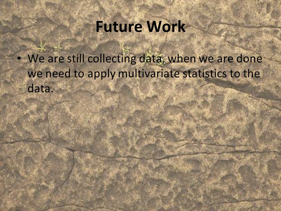 Future Work We are still collecting data, when we are done we need to apply multivariate statistics to the data.