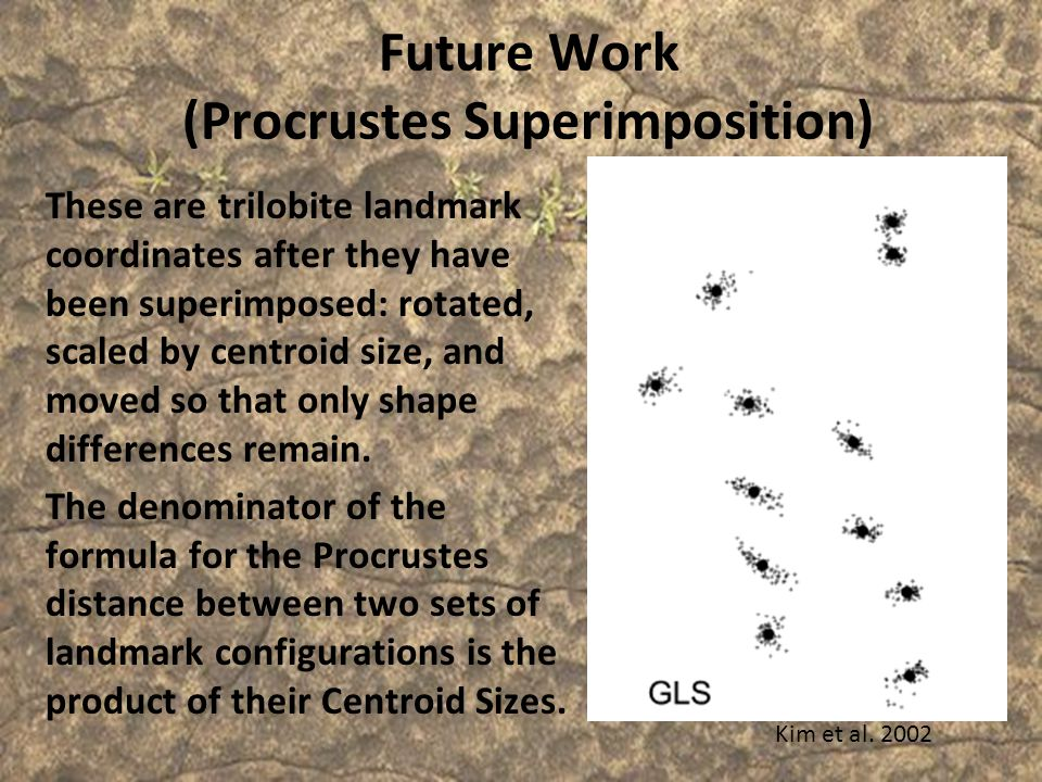 Future Work (Procrustes Superimposition)