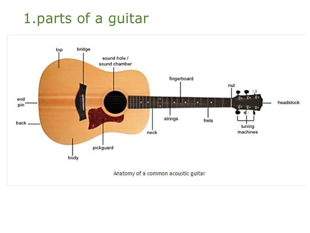 Level One Guitar Parts Of A Right Hand Chords Left Acoustic Diagram 2