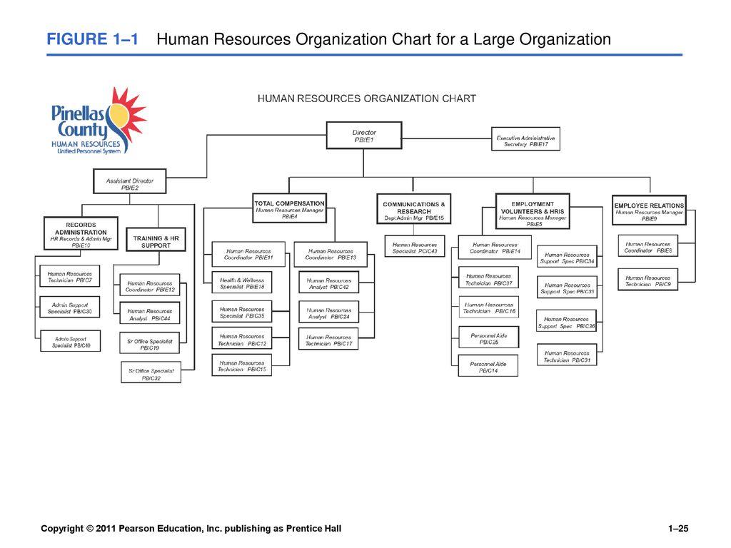 Human Resources Management 12e Gary Dessler - ppt download