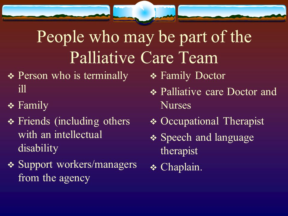 People who may be part of the Palliative Care Team