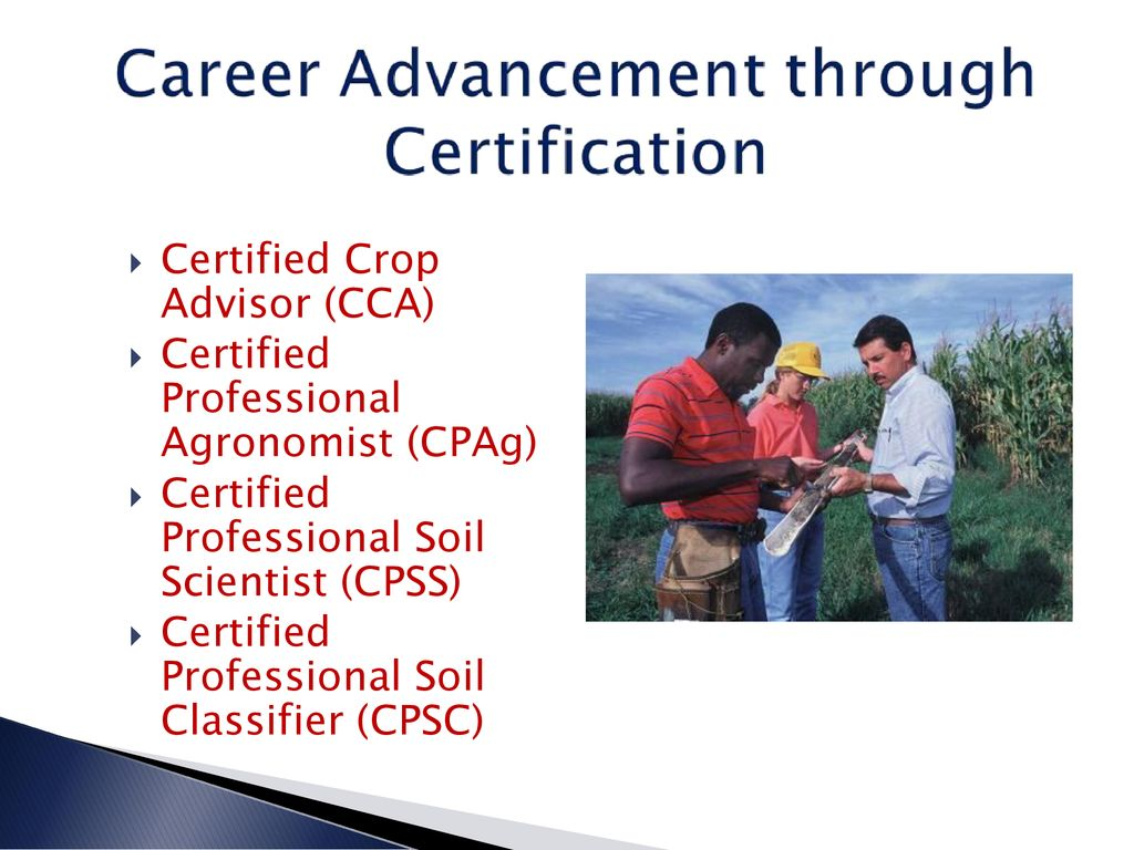 American Society Of Agronomy Crop Science Society Of America Soil
