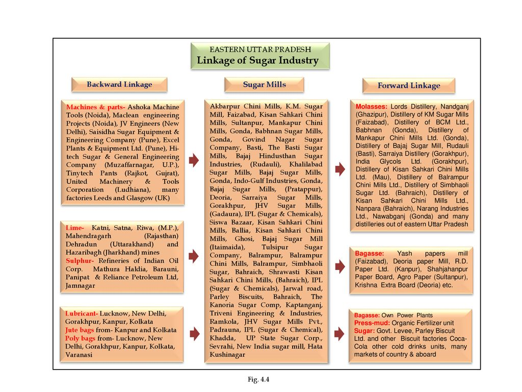Linkage of Sugar Industry - ppt download
