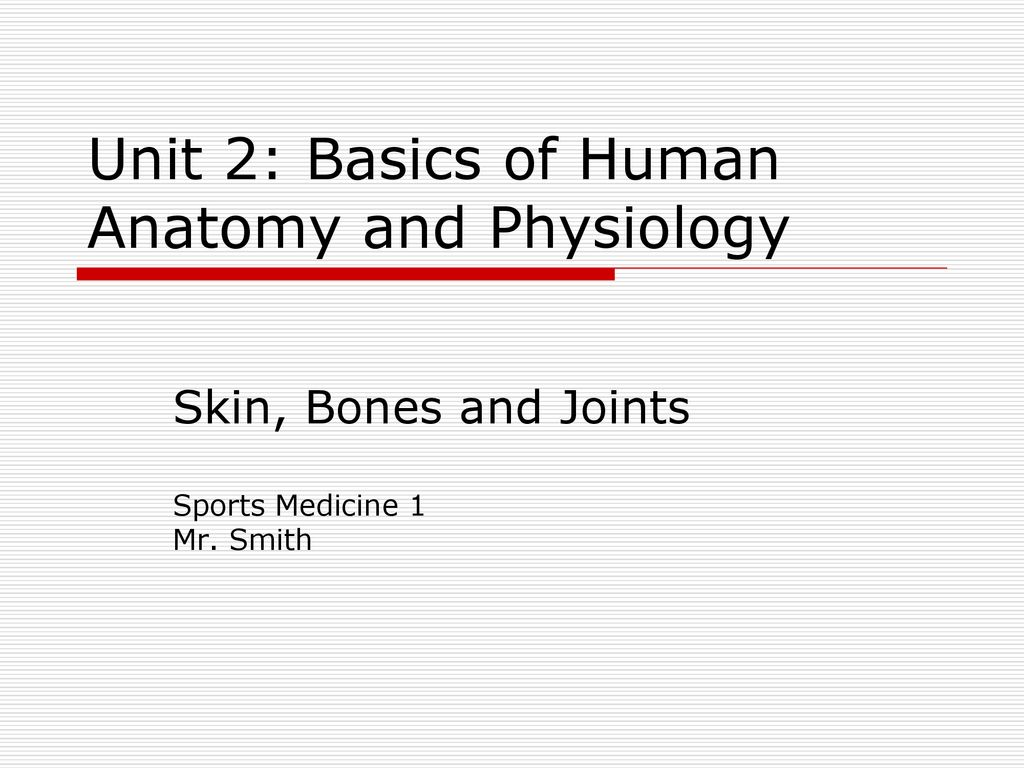 Unit 2: Basics of Human Anatomy and Physiology - ppt download