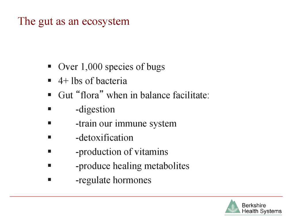 Gastrointestinal Balance: Managing Leaky Gut - ppt download