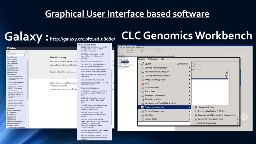 Stupendous Chip Seq Analysis Using Clcgenomics Workbench Ppt Download Evergreenethics Interior Chair Design Evergreenethicsorg