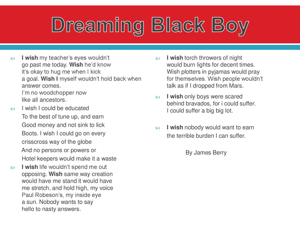 what is the theme of black boy