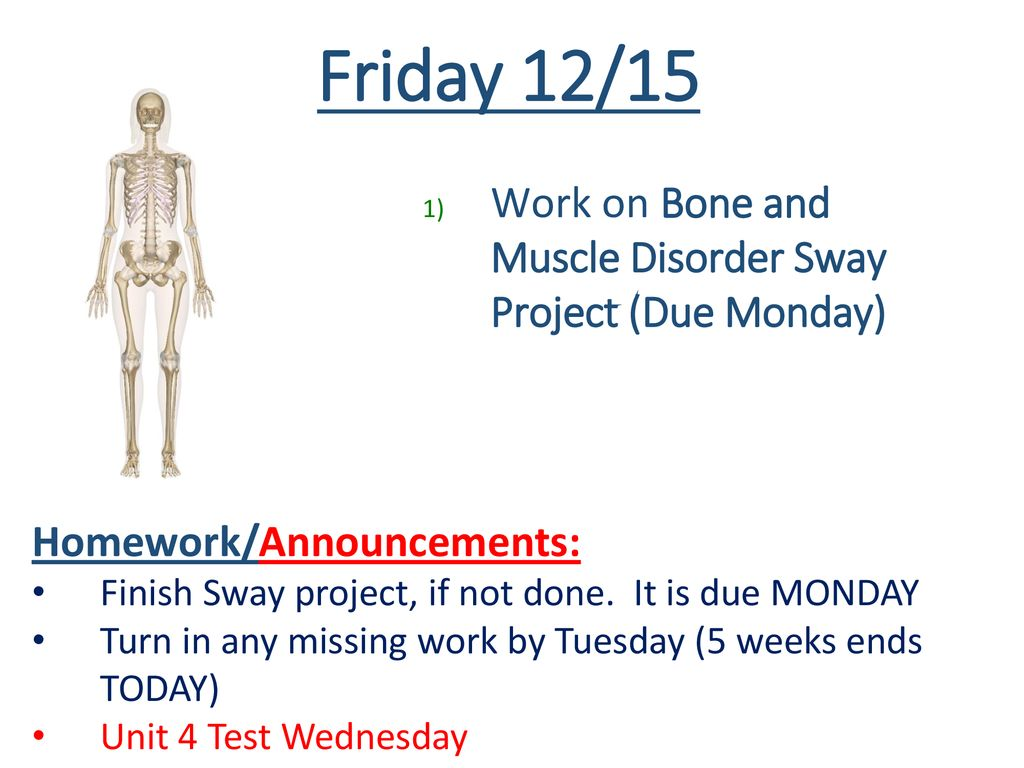 friday 12/15 work on bone and muscle disorder sway project (due monday)