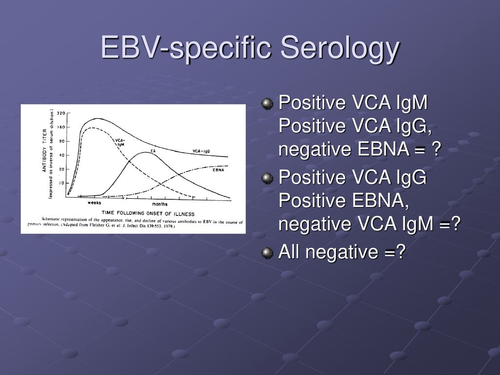 Infectious Mononucleosis & EBV Infection - ppt download