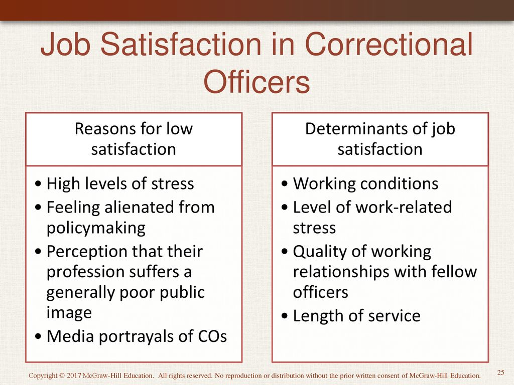 correctional officer subculture
