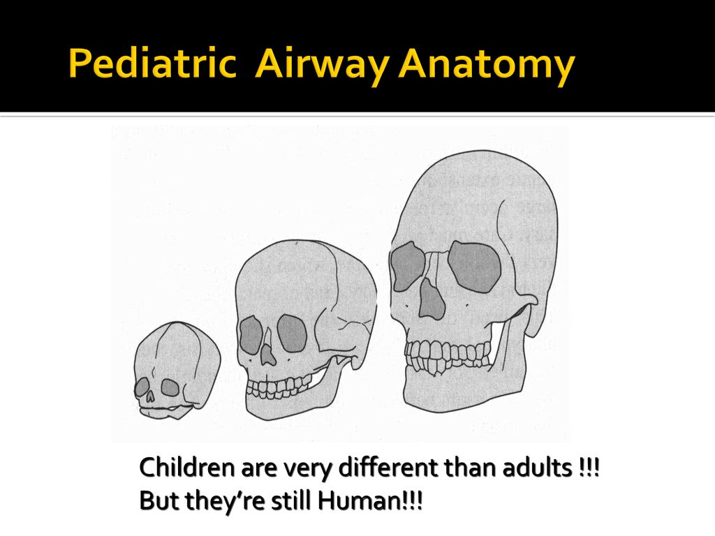 Airway 911: Decision Analysis in Difficult Airway Management - ppt ...