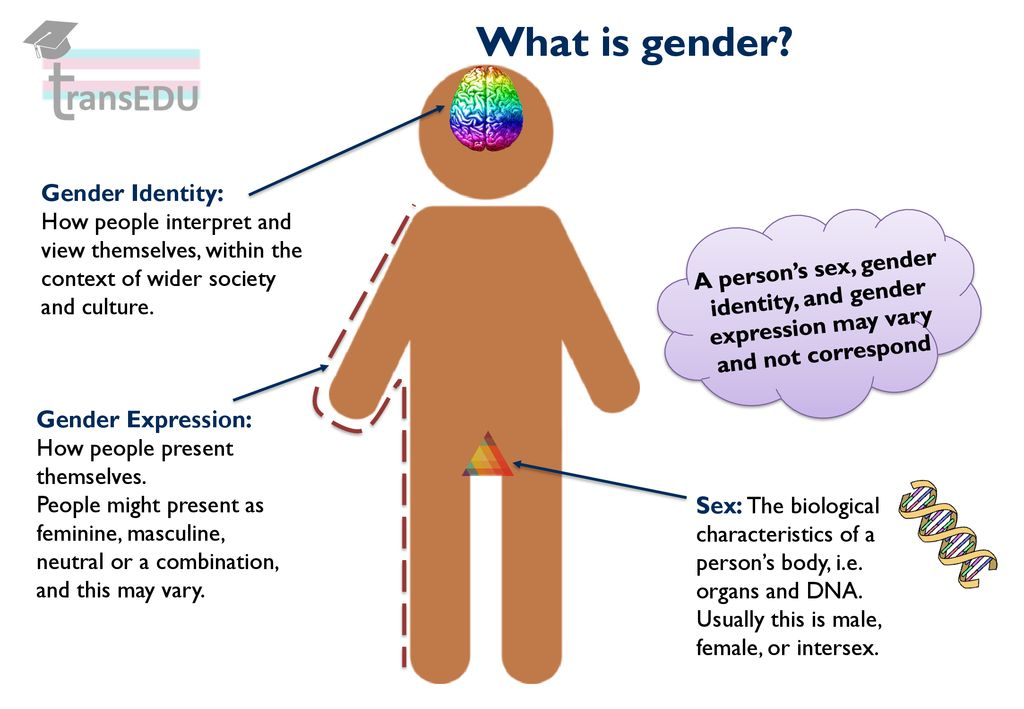 Introduction To Trans And Gender Diverse Identities Ppt Download