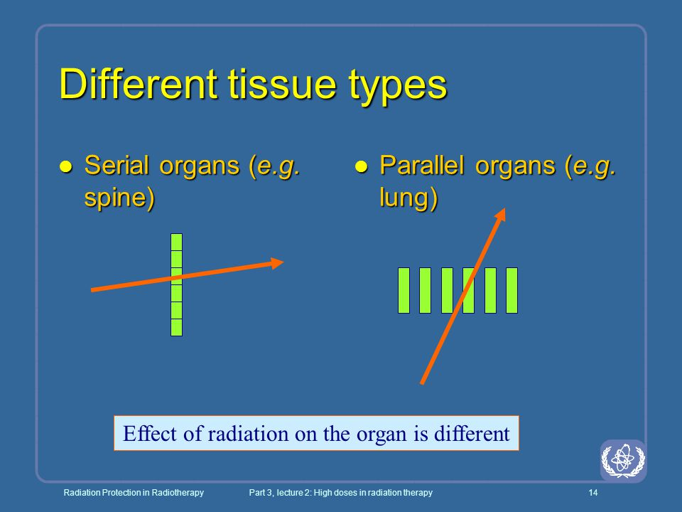 Different tissue types