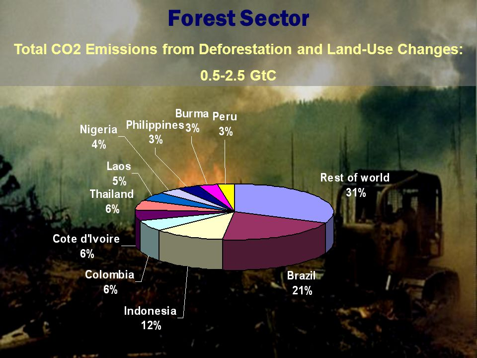 Total CO2 Emissions from Deforestation and Land-Use Changes: