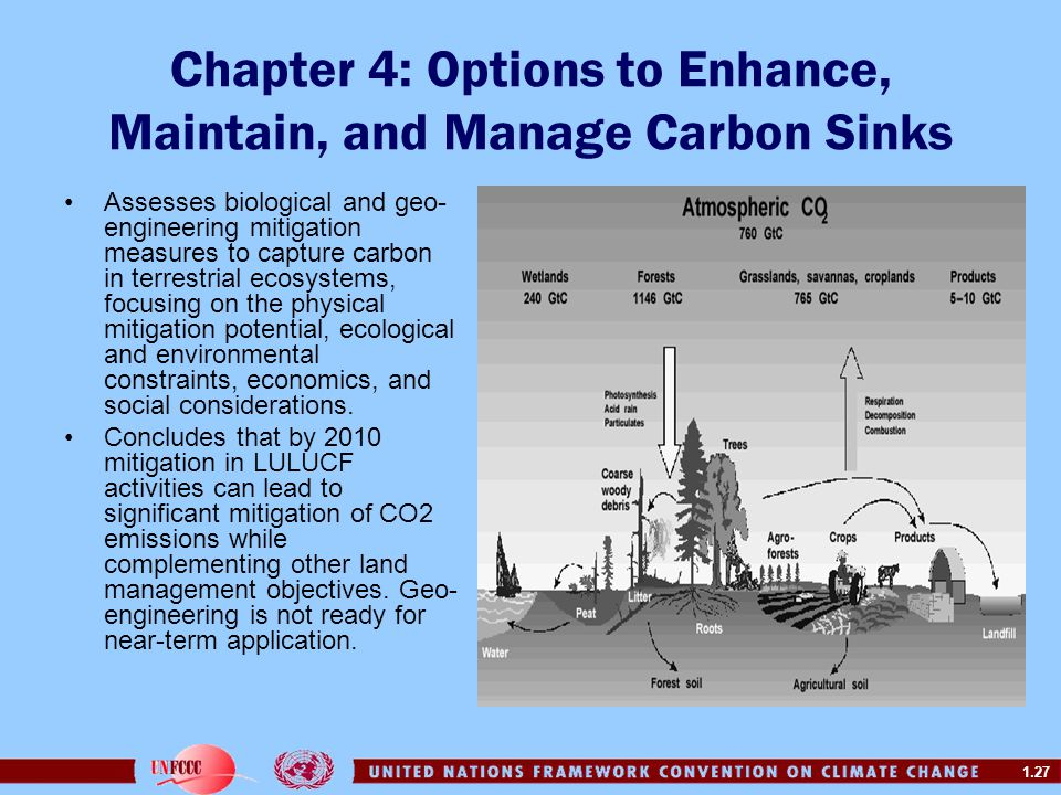 Chapter 4: Options to Enhance, Maintain, and Manage Carbon Sinks