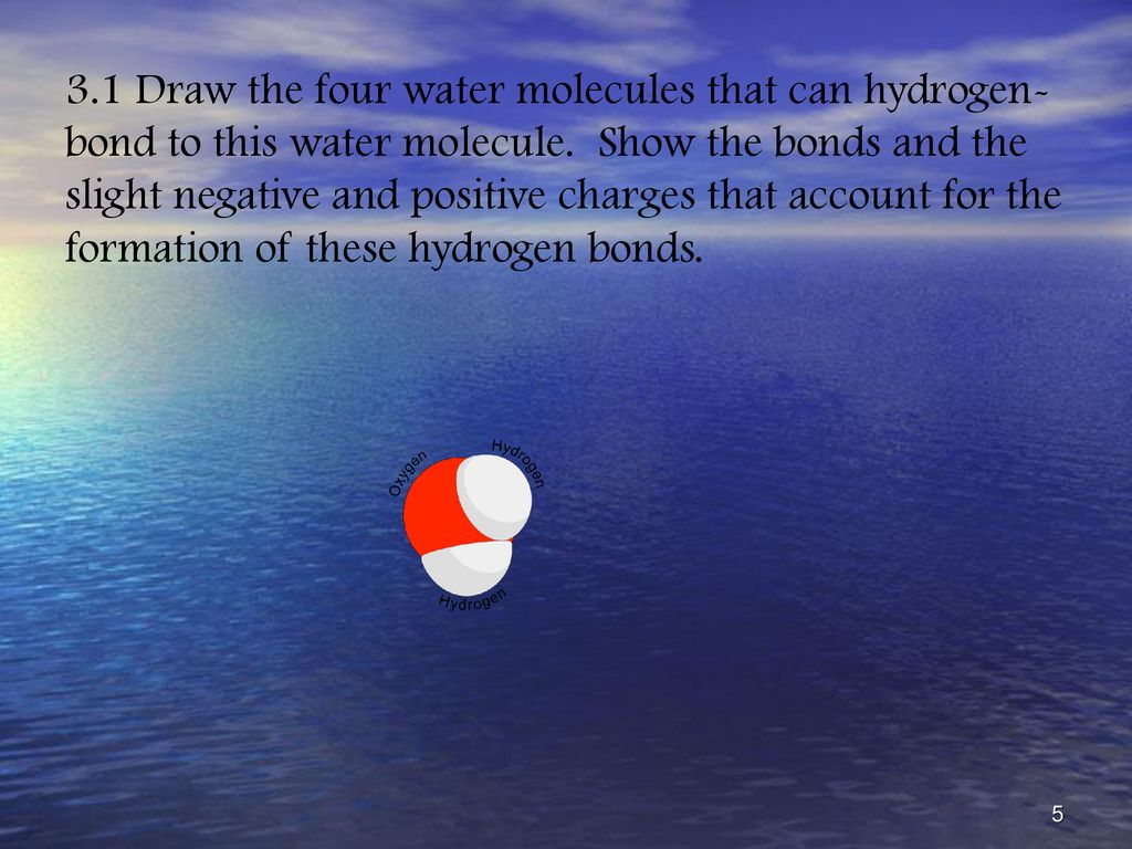 Water And The Fitness Of The Environment Ppt Download