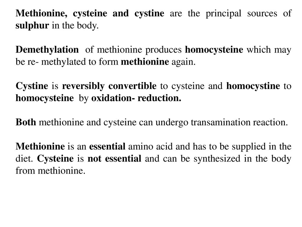 Metabolism of Sulphur Containing Amino Acids - ppt download