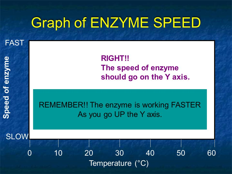 REMEMBER!! The enzyme is working FASTER