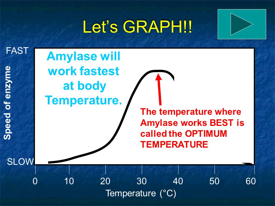 Let's GRAPH!! Amylase will work fastest at body Temperature. FAST
