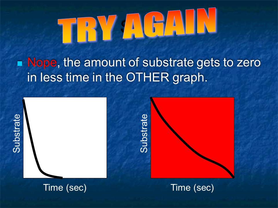 How to interpret enzyme graphs - ppt video online download