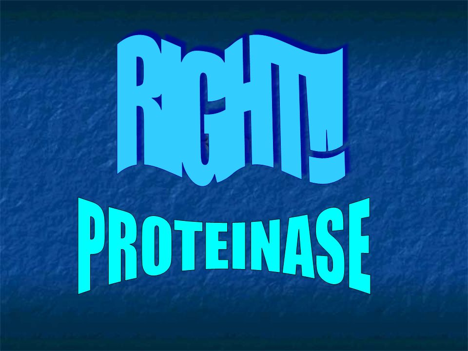 RIGHT!! Right!! PROTEINASE