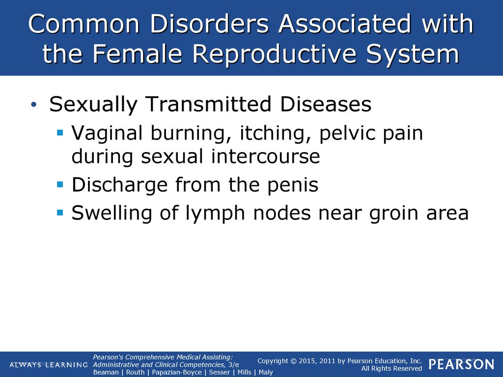 33 The Reproductive System Lesson 2: - ppt download