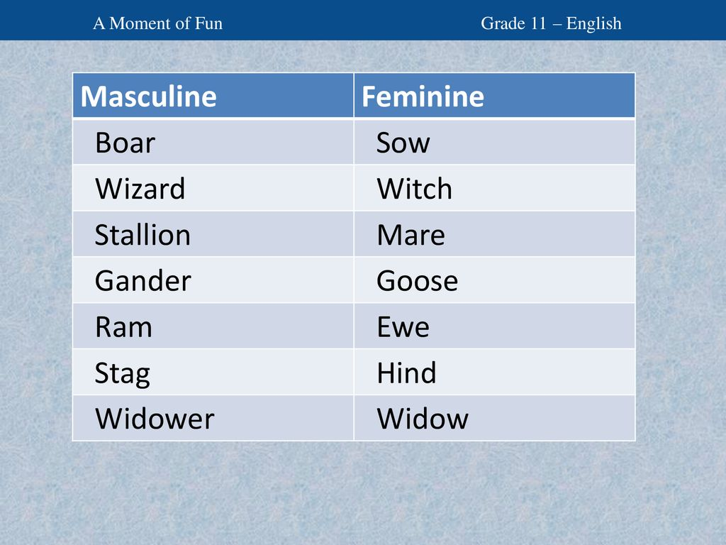 Uses masculine and feminine forms of nouns appropriately