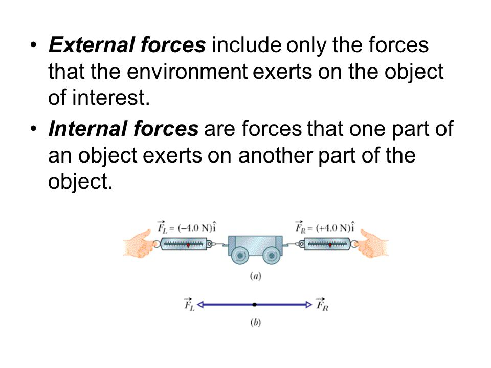 External forces include only the forces that the environment exerts on the object of interest.
