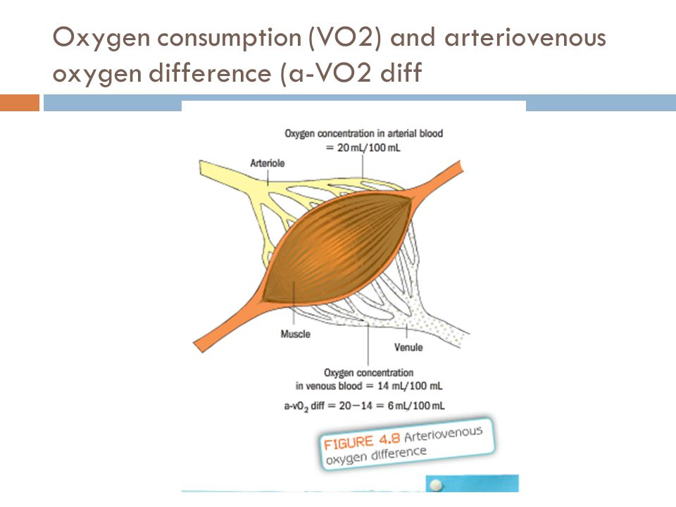 Oxygen consumption (VO2) and arteriovenous oxygen difference (a-VO2 diff