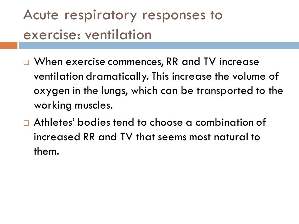 Acute respiratory responses to exercise: ventilation