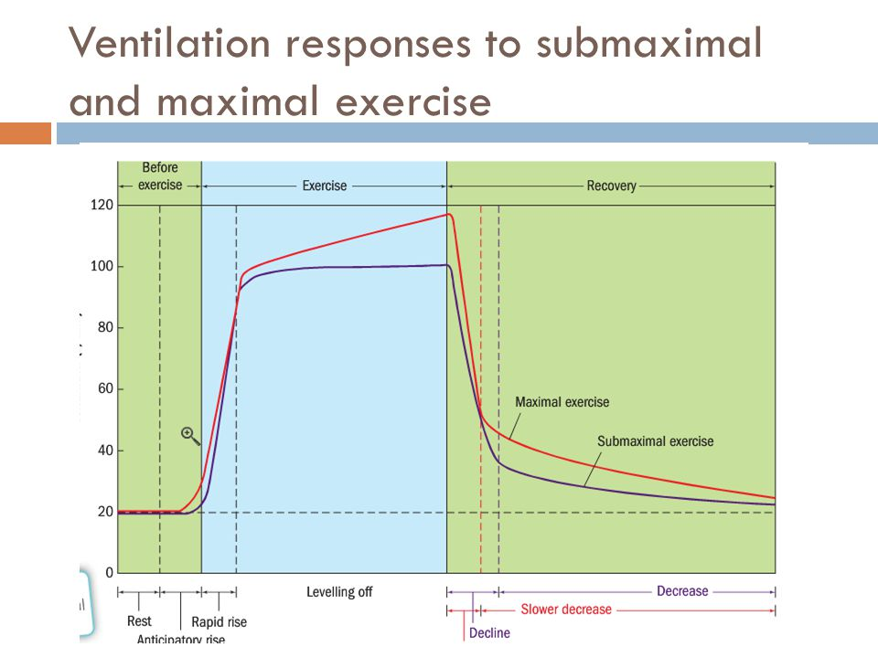 Ventilation responses to submaximal and maximal exercise