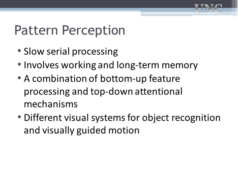 Pattern Perception Slow serial processing