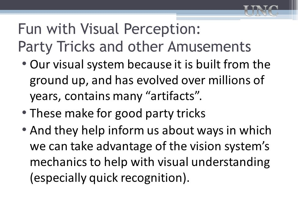 Fun with Visual Perception: Party Tricks and other Amusements