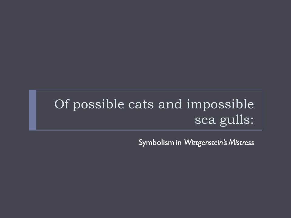 Of possible cats and impossible sea gulls: