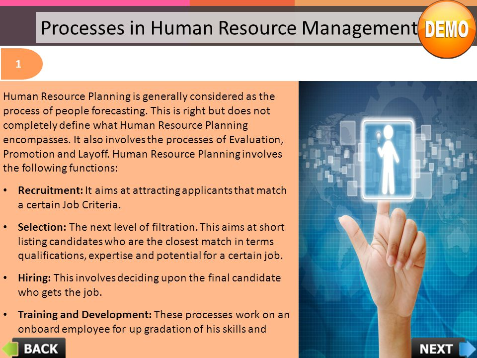 Processes in Human Resource Management