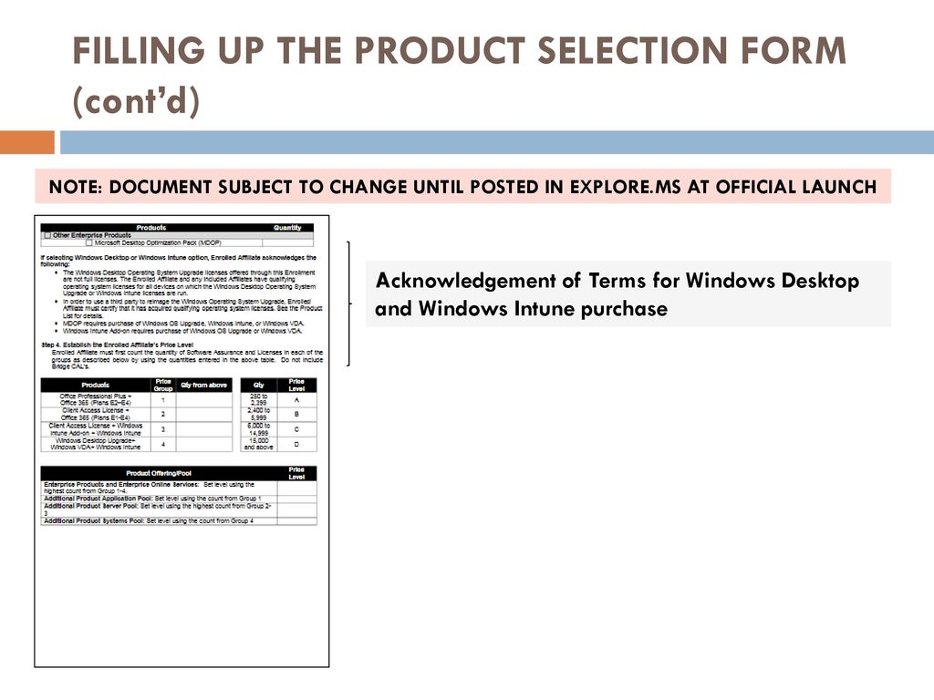 ms product terms