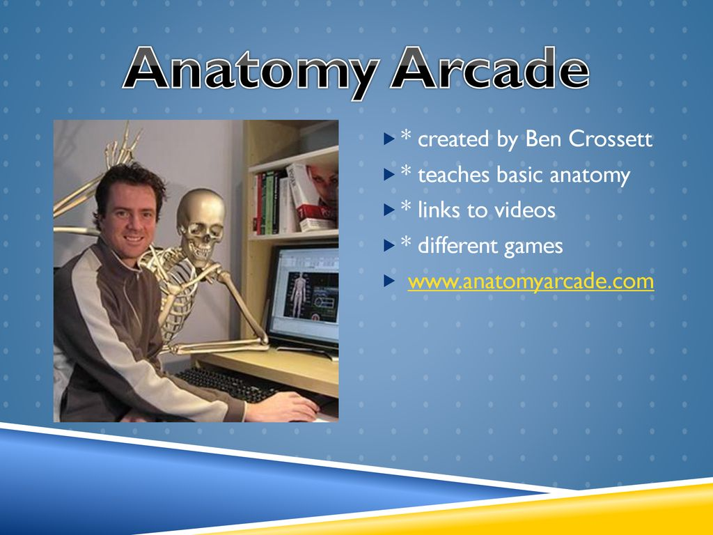 Game-based learning Anatomy Arcade. - ppt download