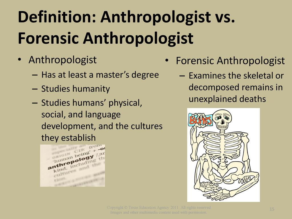 role of forensic pathologists and anthropologists - ppt download