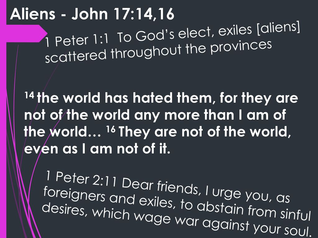 John 17: I have given them your word and the world has hated them
