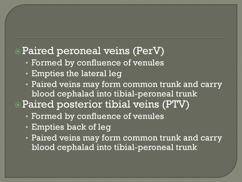 Vascular Technology Lecture 22 : Venous Gross Anatomy HHHoldorf ...